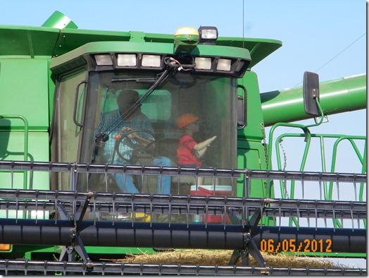 Harvest 2012 5
